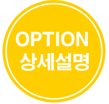 option ex